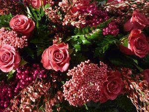 Phoenicia Floral